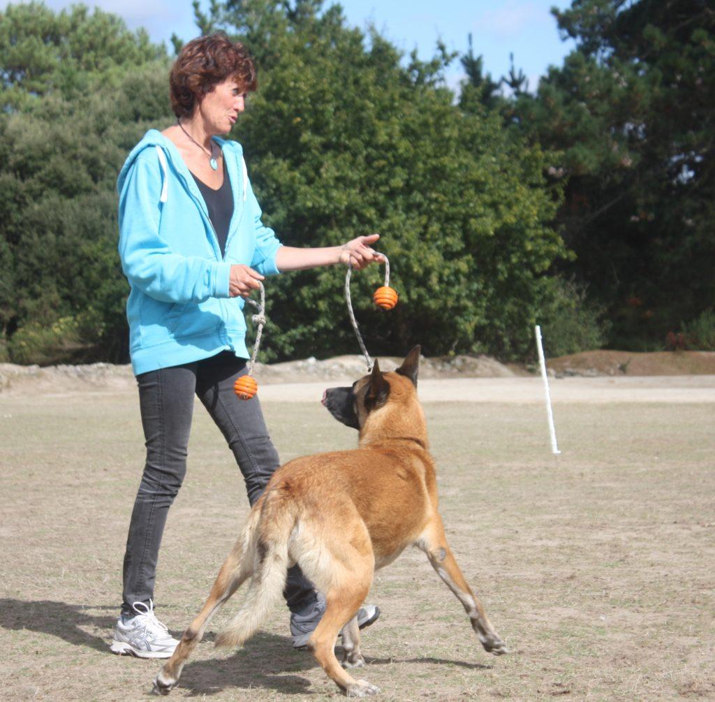 Isabelle Morphy pendant une séance de dressage chien (56) Auray Plouharnel, Pluvigner