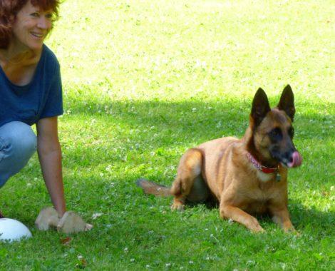 Isabelle Morphy, educateur canin à Auray, Quiberon, Crac'h,